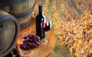 vino_vigneti_botte
