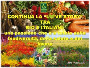 love story bio