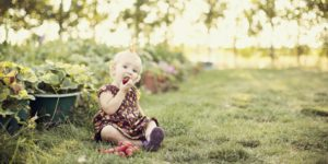 A young girl eats strawberries from the garden. Yum.